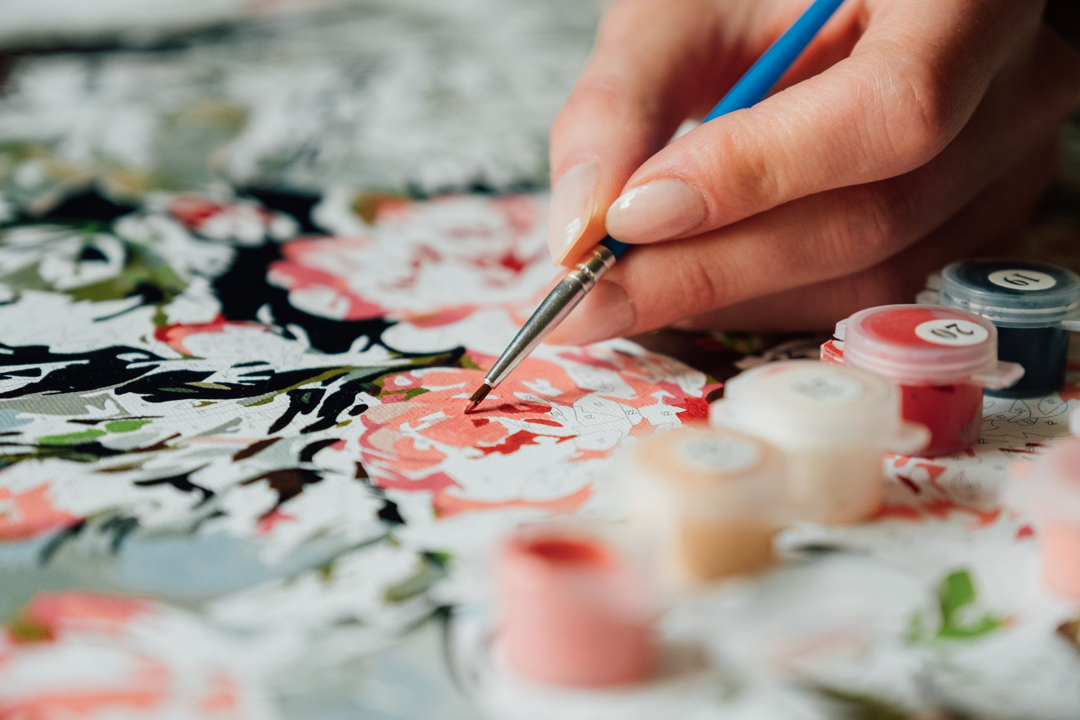 How to Paint with a Paint by Numbers Kit?